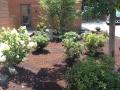 Planting Design, Antrim NH